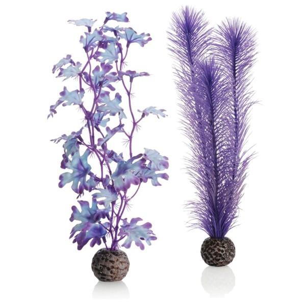 biOrb Kelppflanze violett - M