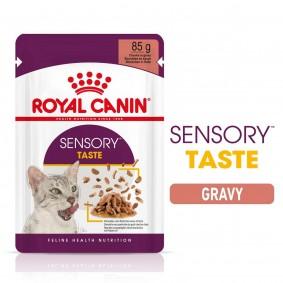 Royal Canin Sensory Taste Gravy