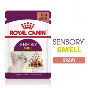 Royal Canin Sensory Smell Gravy