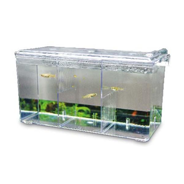 Hobby Ablaichbehälter Nido 5 26 x 14 x 13 cm