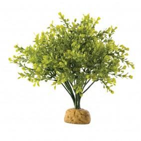 Exo Terra Terrarium Bodenpflanze - Boxwood Bush