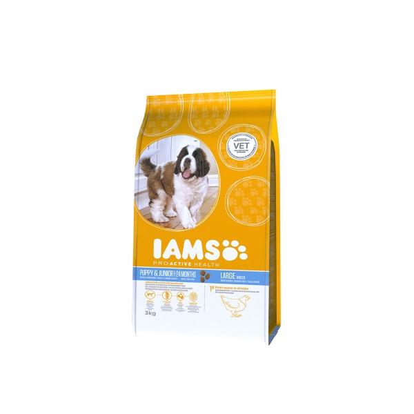 IAMS Hund Trockenfutter Puppy & Junior Große Rasse Huhn