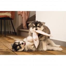 beeztees Puppy Hundespielzeug Buddy Hase