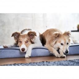 ZooRoyal Orthopädisches Hundekissen Hugo grau