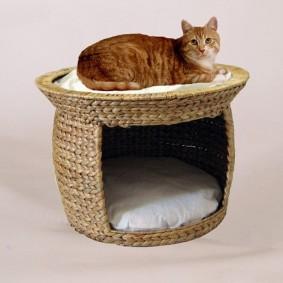 Silvio Design Korbturm für Katzen Wasserhyazinthe