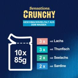 FELIX Sensations Crunchy Geschmacksvielfalt aus dem Wasser 10x85g + 1x40g Knusperstückchen