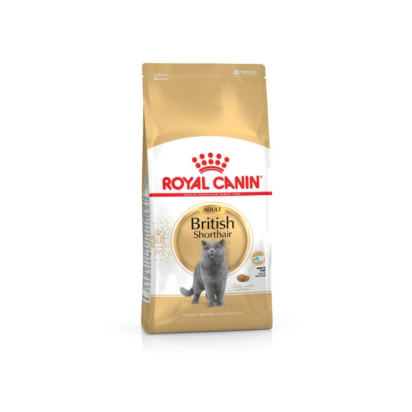 royal canin british shorthair katzenfutter kaufen bei zooroyal. Black Bedroom Furniture Sets. Home Design Ideas