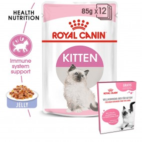 ROYAL CANIN Feline Health Nutrition Kitten in Gelee 12x85g + ROYAL CANIN Willkommens-Box Kitten