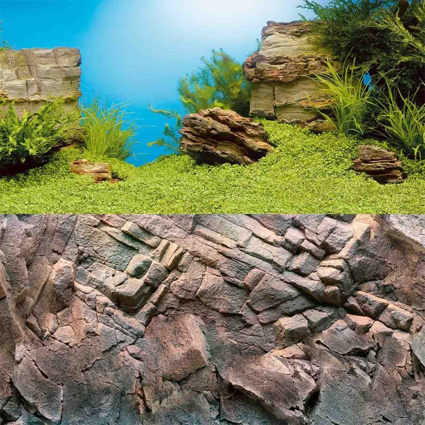 Juwel Rückwand Poster für Aquarium
