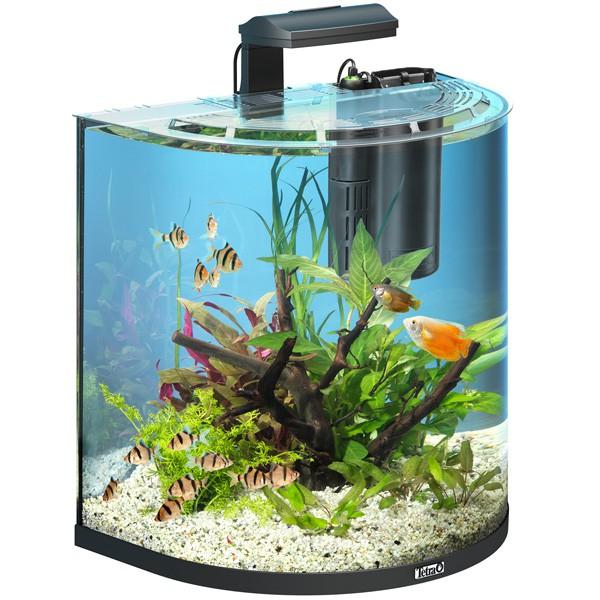 ZooRoyal.de / Aquaristik / Aquarium / Nano-Aquarium / Tetra AquaArt ...