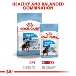 ROYAL CANIN MAXI PUPPY Welpenfutter nass für große Hunde