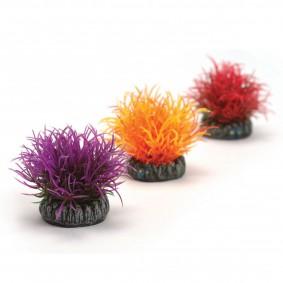 biOrb Aquariumdekoration bunte Pflanzenkugeln 3er-Set