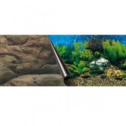 Aquarium Photo-Rückwand Sea+Rock