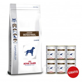 Royal Canin Vet Diet Gastro Intestinal GI 25 Canine 14kg + Vet Diet Gastro Intestinal 6x400g Gratis