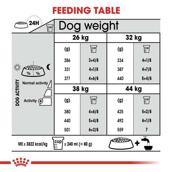 ROYAL CANIN DENTAL CARE MAXI Trockenfutter für große Hunde mit empfindlichen Zähnen