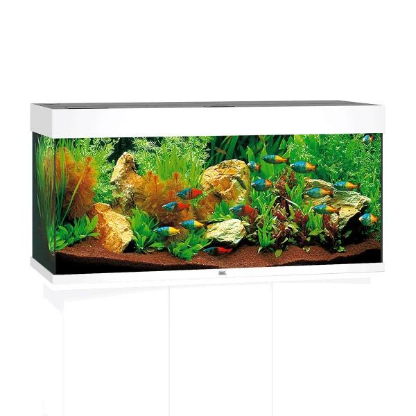 Offen 60 Liter Aquarium Set ohne Heizung Heller Glanz
