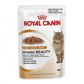Royal Canin Katzenfutter Intense Beauty in Gelee 85g