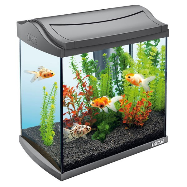 tetra aquaart aquarium komplett set 30 l tetra aquaristik. Black Bedroom Furniture Sets. Home Design Ideas