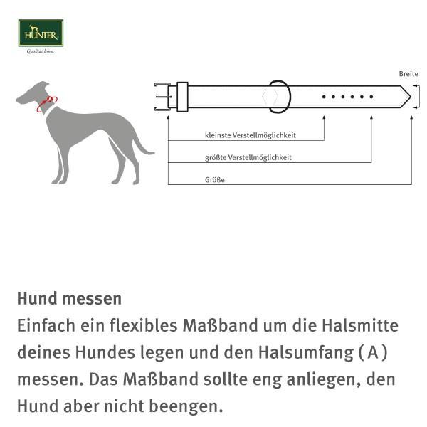 Hunter Elchlederhalsband Petit für kleine Hunde schwarz mit Strass