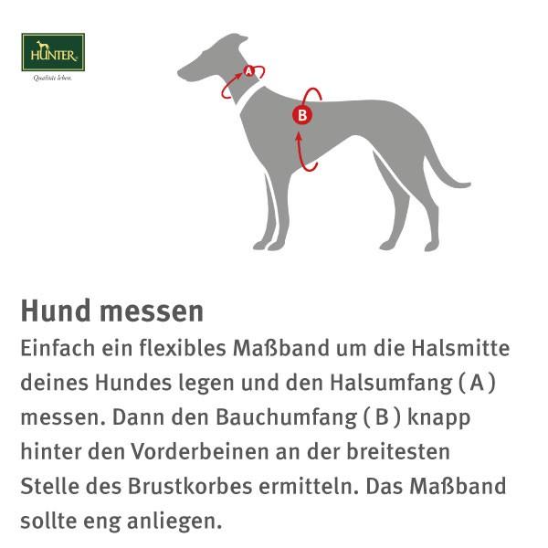 Hunter Geschirr Neopren Hellgrün/Petrol