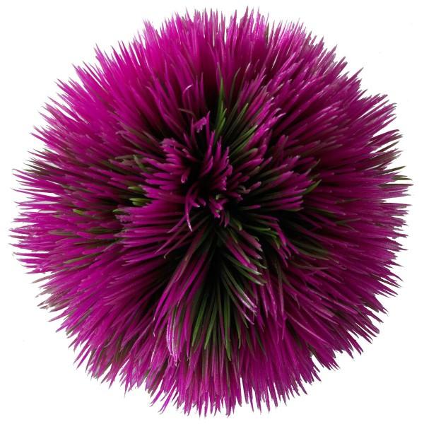 EBI Aquarium Dekoration Plant Ball - Violett
