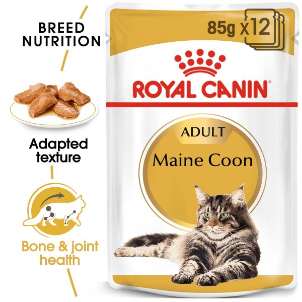 ROYAL CANIN Maine Coon Adult Katzenfutter nass