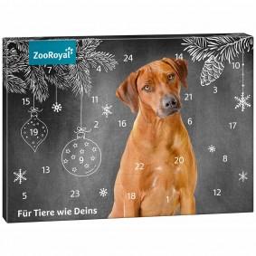 ZooRoyal Adventskalender Hund