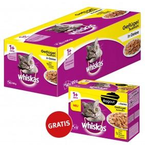 Whiskas 1+ Geflügelauswahl in Gelee 40x100g + Whiskas Adult 1+ Ragout Geflügel in Gelee 12x85g GRATI