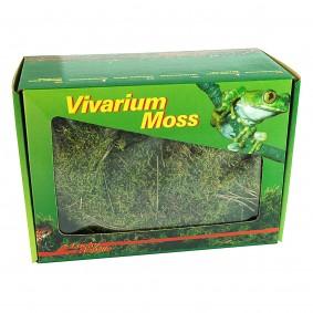 Lucky Reptile Vivarium Moos 150g