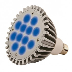 Aqua Medic LED Spot aquasunspot Éclairage bleu