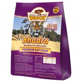 Wildcat Bhadra mit Pferdefleisch