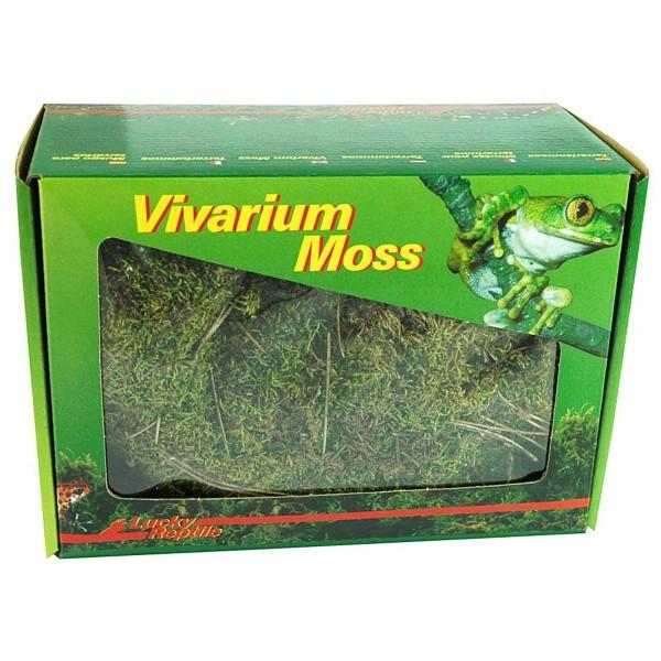 Lucky Reptile Vivarium Moos 150 g