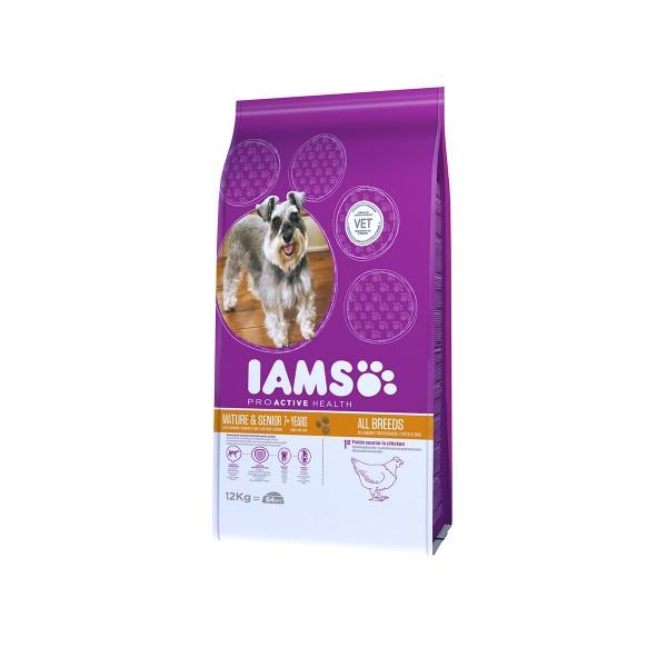 IAMS Hund Trockenfutter Mature & Senior Huhn