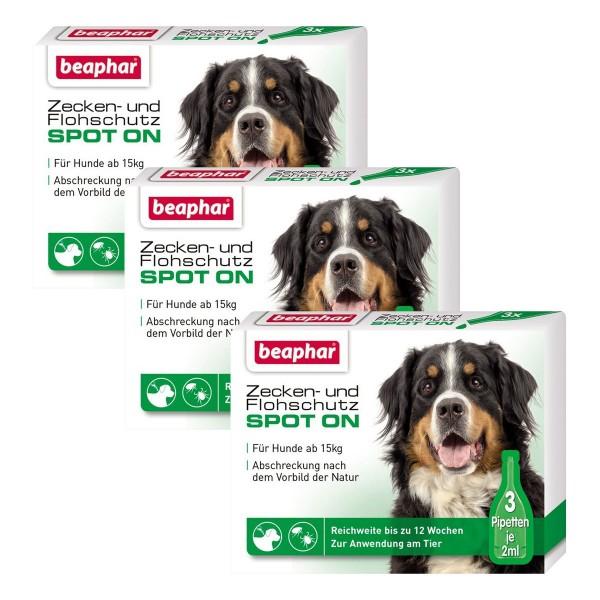 beaphar Spot On Tropfen für große Hunde 3er-Pack