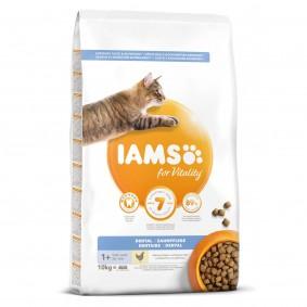IAMS for Vitality Dental mit frischem Huhn 10kg