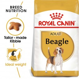 ROYAL CANIN Beagle Adult Hundefutter trocken