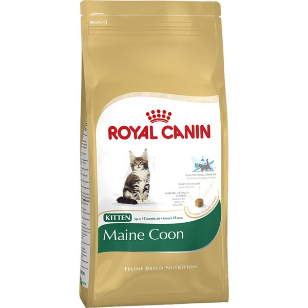 royal canin katzenfutter kitten maine coon 36. Black Bedroom Furniture Sets. Home Design Ideas