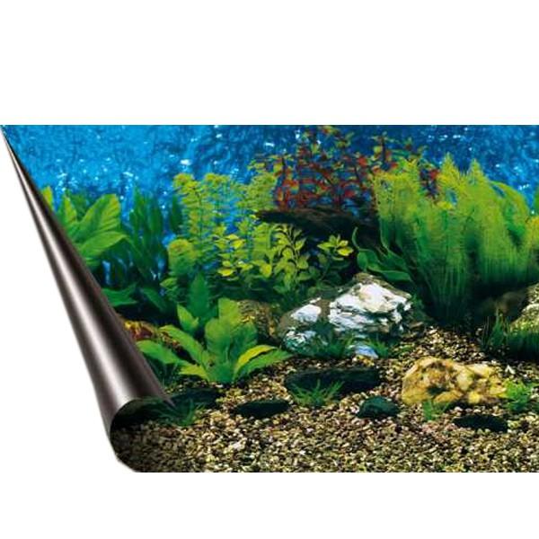 aquarium rückwand poster