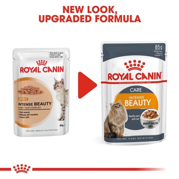 ROYAL CANIN Intense Beauty Katzenfutter nass in Soße für schönes Fell