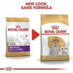 ROYAL CANIN Maltese Adult Hundefutter trocken