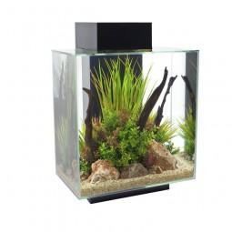 Fluval Edge II Aquarium