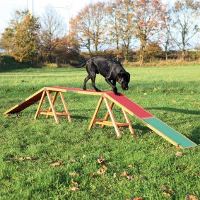 Trixie Dog Activity Agility Steg