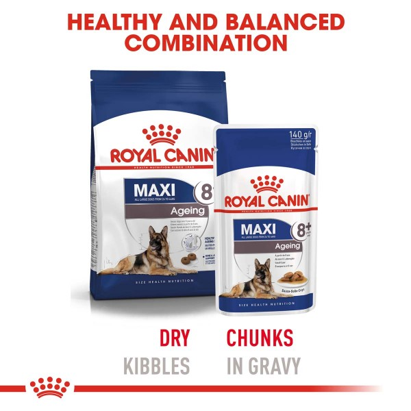 ROYAL CANIN MAXI Ageing 8+ Trockenfutter für ältere große Hunde
