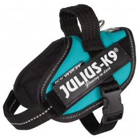 Julius-K9 IDC Geschirr petrol