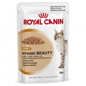 Royal Canin Intense Beauty in Soße 48x85g