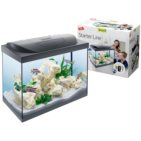 tetra starter line aquarium led 80l g nstig kaufen bei zooroyal. Black Bedroom Furniture Sets. Home Design Ideas