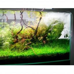 TWINSTAR 2 Aquarium-Sterilisator Shrimp 30