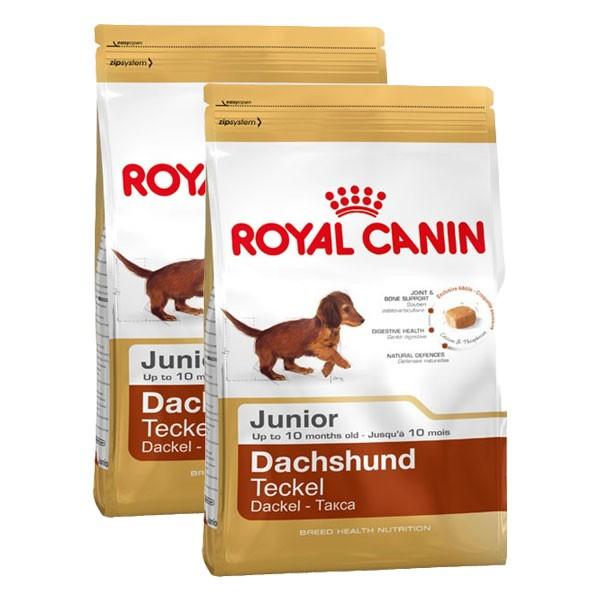 Royal Canin Hundefutter Dachshund Junior 2x1,5kg