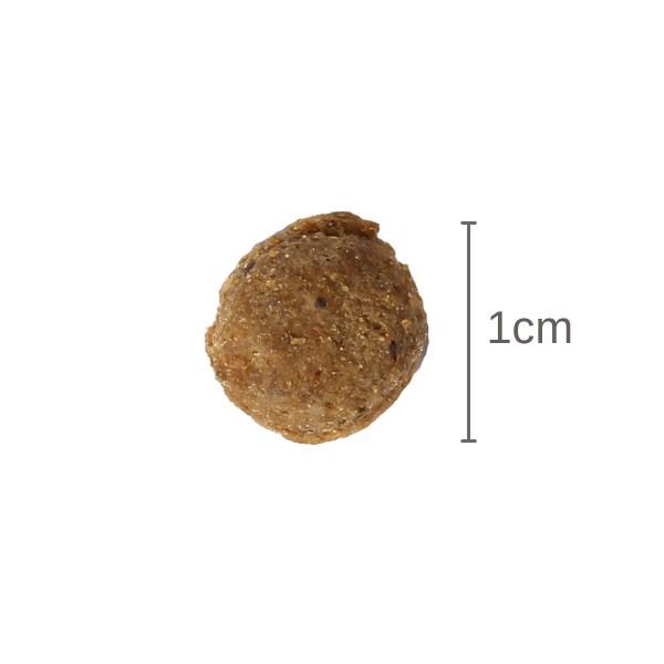 GranataPet Trockenfutter DeliCatessen Lachs Adult