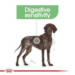 ROYAL CANIN DIGESTIVE CARE MAXI Trockenfutter für große Hunde mit empfindlicher Verdauung